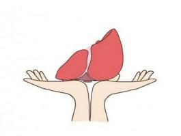 什么原因会导致肝癌?如何预防肝脏疾病?