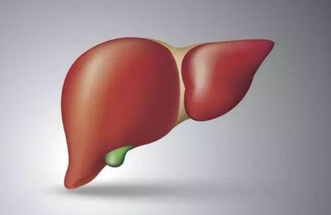 怎么保肝护肝?养护肝脏的方法那个好?疏通肝经最简单的方法 第1张